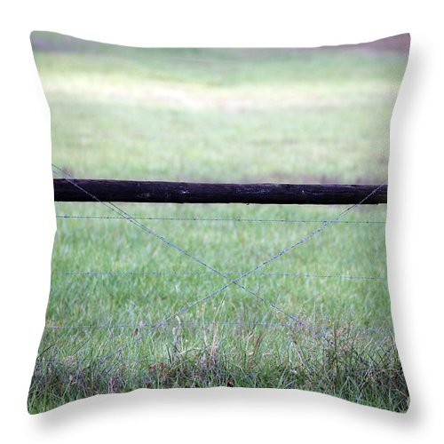 Fencepost Throw Pillow featuring the photograph H I by Amanda Barcon