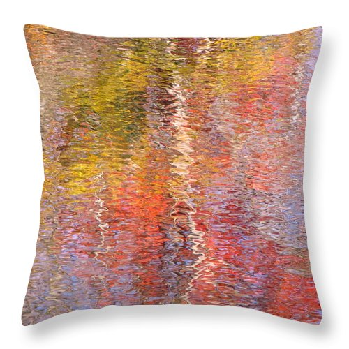 Abstract Throw Pillow featuring the photograph Life Is But A Dream by Sybil Staples