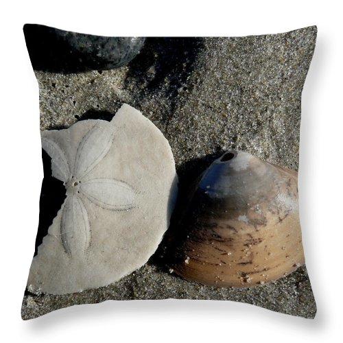 Beach Throw Pillow featuring the photograph Hampton Beach by Mark Grayden
