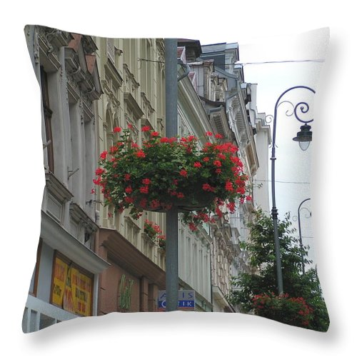 Flowers Throw Pillow featuring the photograph Hanging Basket by Karen Granado