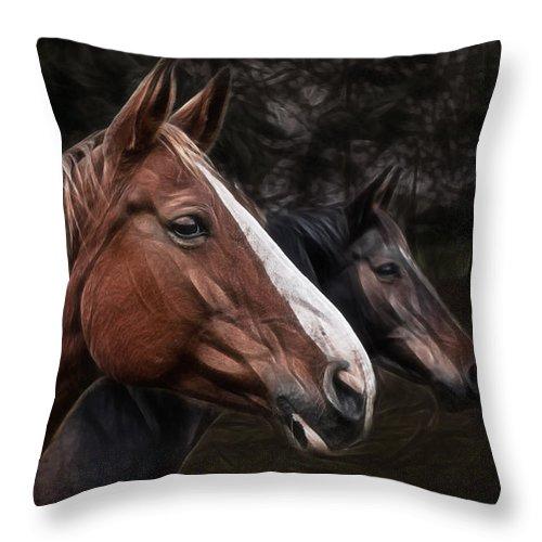 Horse Throw Pillow featuring the photograph Hanoverians by Joachim G Pinkawa