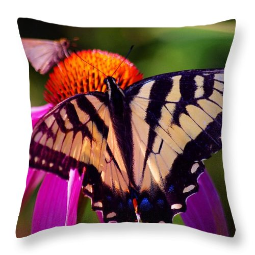 Flowers Throw Pillow featuring the photograph Happiness In Our Own Gardens... by Arthur Miller