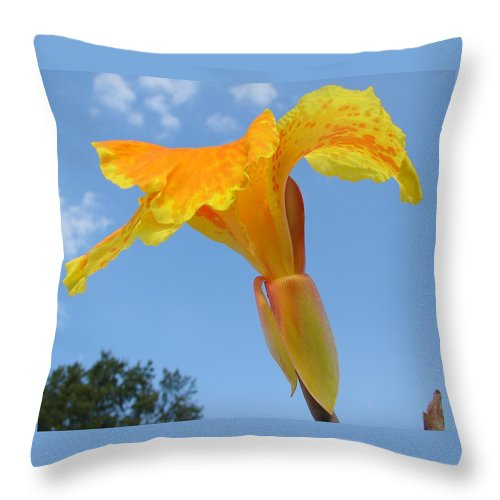 Throw Pillow featuring the photograph Happy Canna by Luciana Seymour