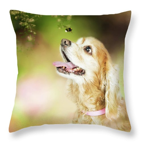 Dog Throw Pillow featuring the photograph Happy Dog Outdoors Looking At Bee by Susan Schmitz
