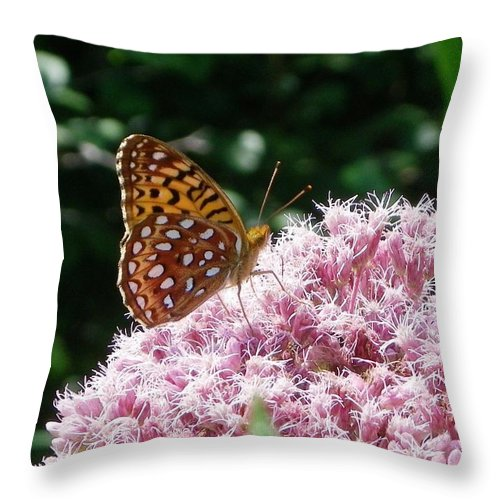 Butterfly Throw Pillow featuring the photograph Happy Hour by Peggy King
