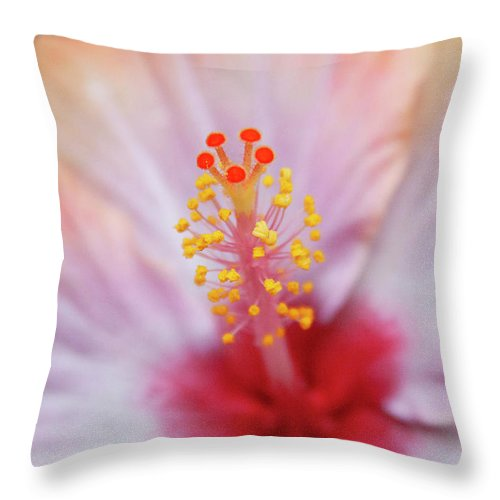 Floral Throw Pillow featuring the photograph Happy Orange by Toni Hopper