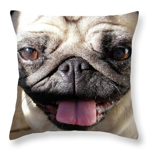 Happy Throw Pillow featuring the photograph Happy Pug by Brett Winn
