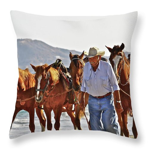Animals Throw Pillow featuring the photograph Hardworking Man by Diana Hatcher