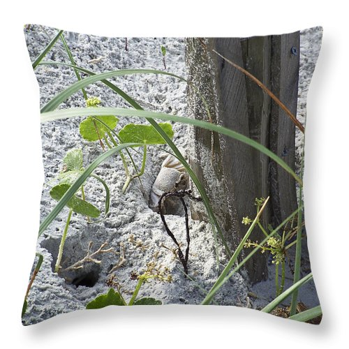 Crab Throw Pillow featuring the photograph Have A Crabby Day by Teresa Mucha