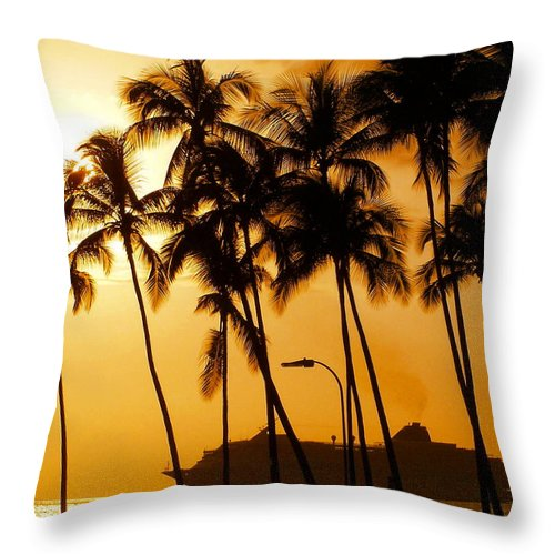 Landscape Throw Pillow featuring the photograph Hawaiian Cruise by Athala Carole Bruckner