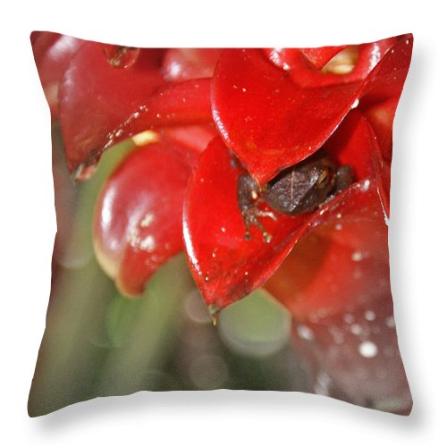 Frog Throw Pillow featuring the digital art Hawaiian Frog by Heather Coen