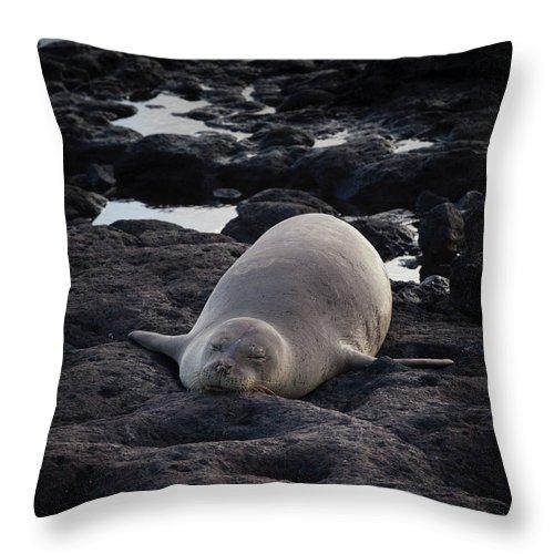 Hawaiian Throw Pillow featuring the photograph Hawaiian Monk Seal by Roger Mullenhour