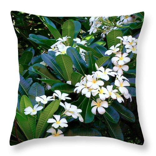 Plumeria Throw Pillow featuring the photograph Hawaiian Plumeria by James Temple