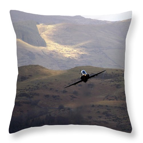 Great Britain Throw Pillow featuring the photograph Hawk In The Welsh Mountains by Angel Ciesniarska