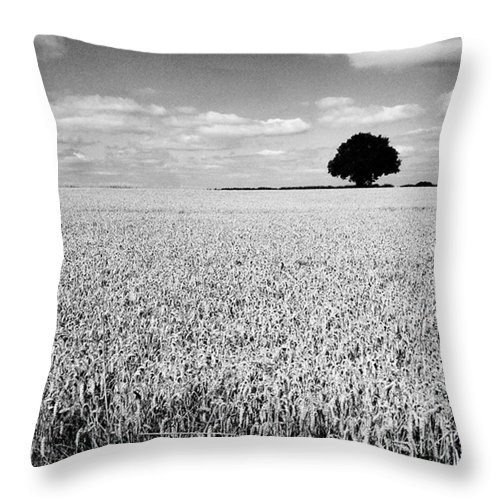 Throw Pillow featuring the photograph Hawksmoor by John Edwards