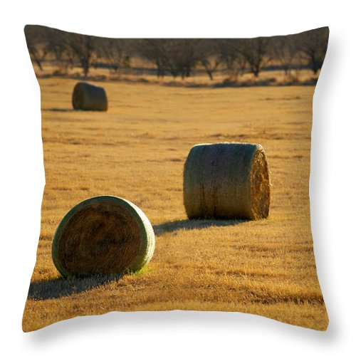 Country Throw Pillow featuring the photograph Hay Bales by Jill Reger