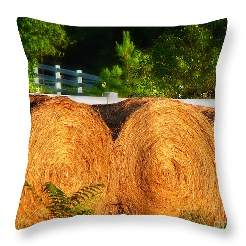 Landscape Throw Pillow featuring the photograph Hay Bales by Todd Blanchard