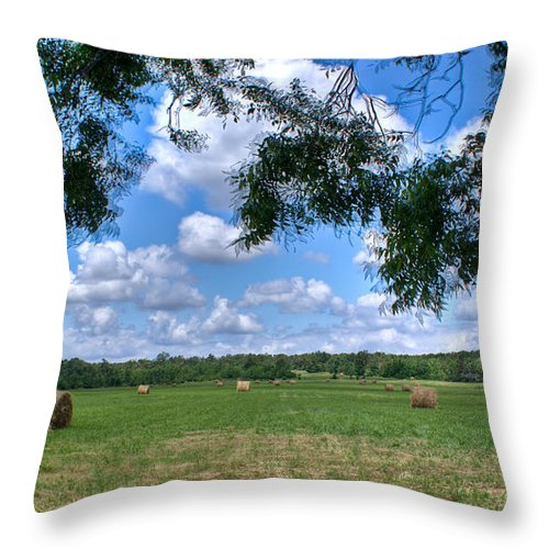 Hay Throw Pillow featuring the photograph Hay Field In Summertime by Douglas Barnett