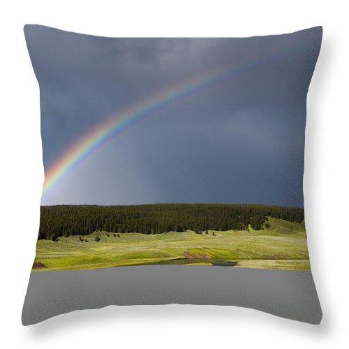 Rainbow Throw Pillow featuring the photograph Hayden Valley Rainbow by Chad Davis