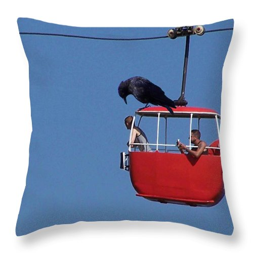 Crows Throw Pillow featuring the photograph He by Christopher Rowlands