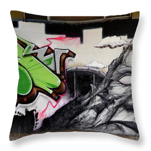 Graffiti Throw Pillow featuring the photograph He Is Really Nice Mom by Bob Christopher