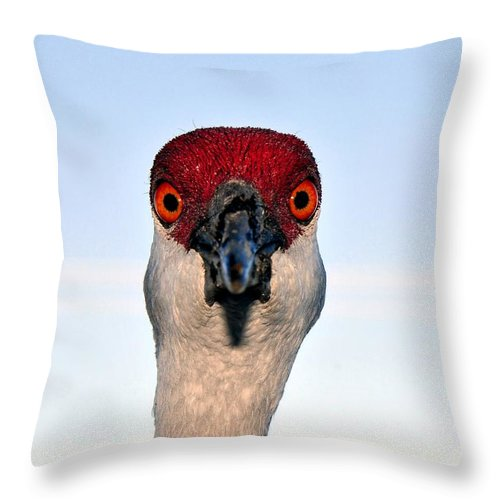 Sand Hill Crane Throw Pillow featuring the photograph Head Shot by David Lee Thompson