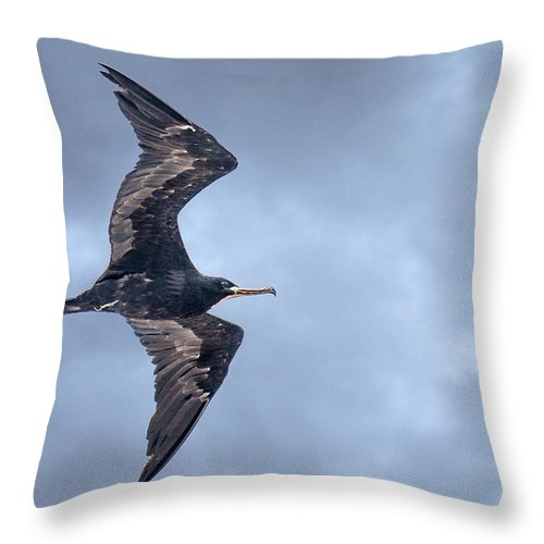 Frigate Throw Pillow featuring the photograph Heading South by Leena Hannonen