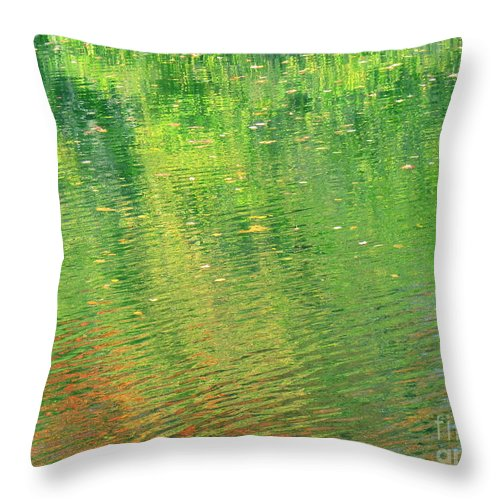 Water Throw Pillow featuring the photograph Healing In All Forms by Sybil Staples