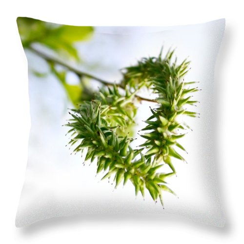 Nature Throw Pillow featuring the photograph Heart In Nature by Kati Finell