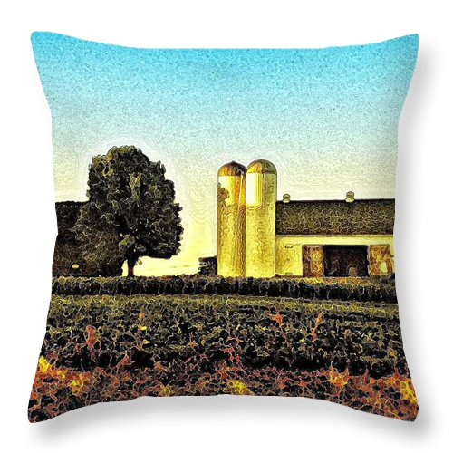 Heartland Throw Pillow featuring the photograph Heartland by Bill Cannon
