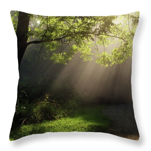 Tree Throw Pillow featuring the photograph Heavenly Rays by Douglas Stucky