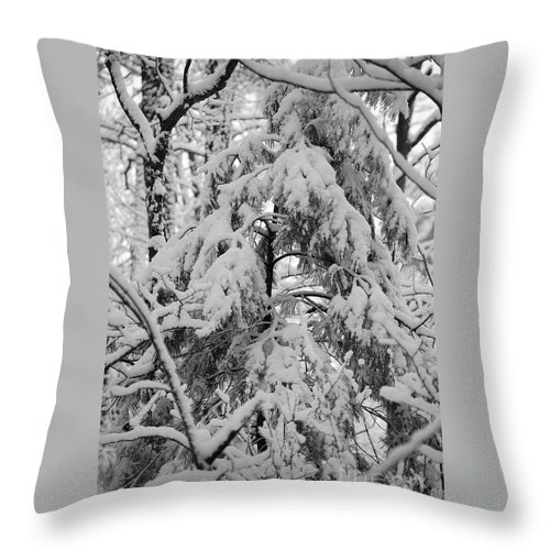 Snow Throw Pillow featuring the photograph Heavy Burden by Eric Liller