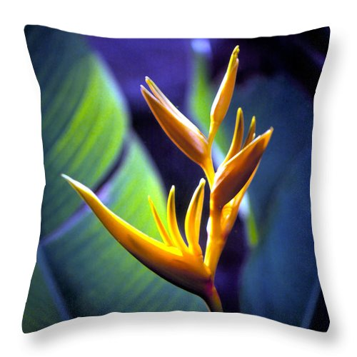 Flowers Throw Pillow featuring the photograph Heliconia Rhizomes by Luciano Comba