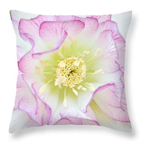 Helleborus Throw Pillow featuring the photograph Hellebore Blossom by Regina Geoghan