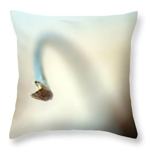 Abstract Throw Pillow featuring the photograph Hello by Lauren Radke