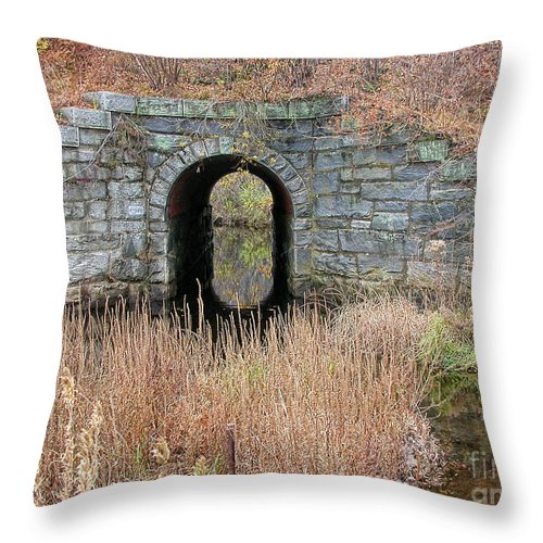 Bridge Throw Pillow featuring the photograph Hellooo by Edward Sobuta