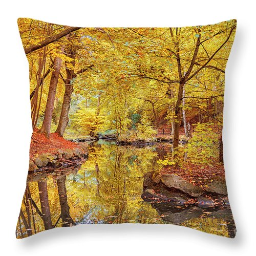 Jordbodalen Throw Pillow featuring the photograph Helsingborg Jordbodalen Forest by Antony McAulay