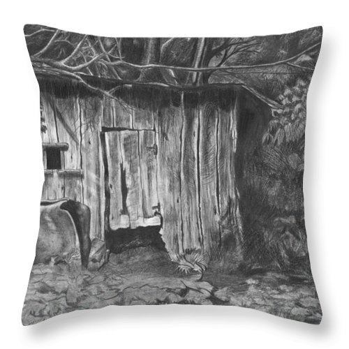 Landscape Throw Pillow featuring the drawing Hen House by Anthony Hurt