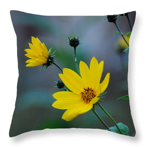 Herb Throw Pillow featuring the photograph Herb by Adrian Bud