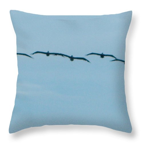 Wildlife Throw Pillow featuring the photograph Here Comes The Birds by Vicki Berchtold
