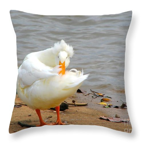 Duck Throw Pillow featuring the photograph Here's Looking At You by Todd Blanchard