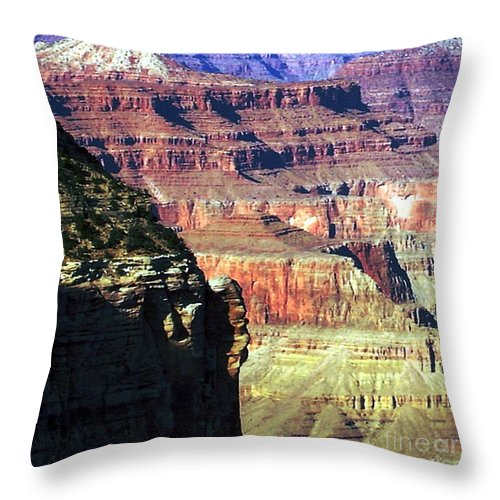 Photograph Throw Pillow featuring the photograph Heritage by Shelley Jones