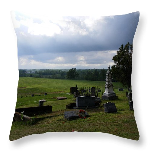Landscape Throw Pillow featuring the photograph Heroes Of Olmsted by Rachel Christine Nowicki