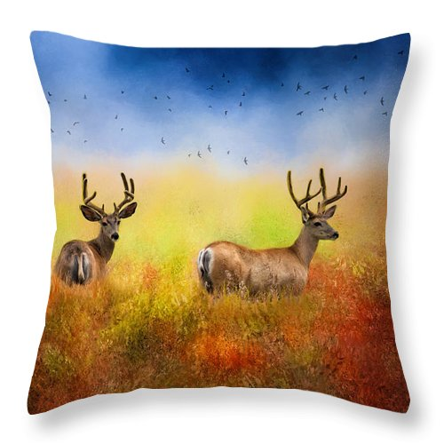 Deer Throw Pillow featuring the photograph Hey Joe Where Did The Girls Go by Diane Schuster