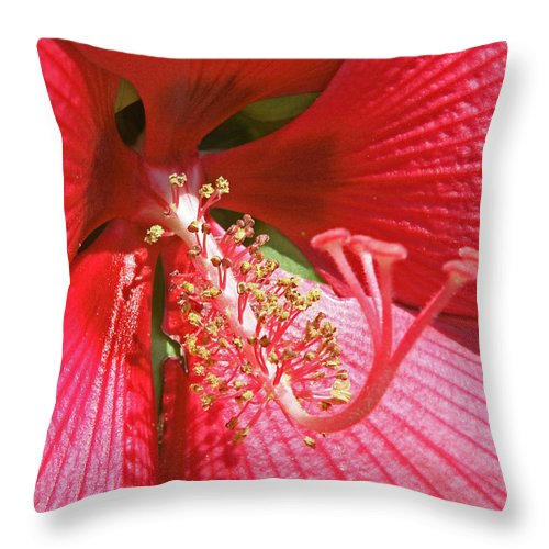 Flowers Throw Pillow featuring the photograph Hibiscus by Donna Shahan