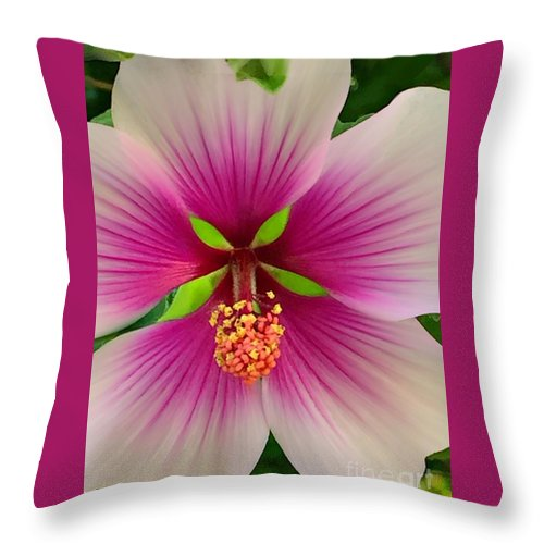 500 Views Throw Pillow featuring the photograph Hibiscus Face by Jenny Revitz Soper