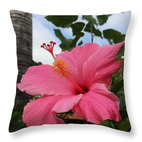 Hibiscus Throw Pillow featuring the photograph Hibiscus S D Z 1 by Di Designs