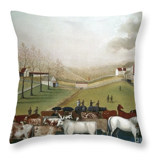 19th Century Throw Pillow featuring the photograph Hicks: Cornell Farm, 1848 by Granger