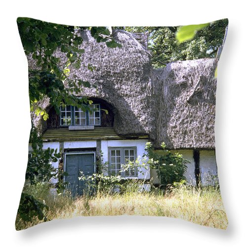 Denmark Throw Pillow featuring the photograph Hidden Beauty by Flavia Westerwelle
