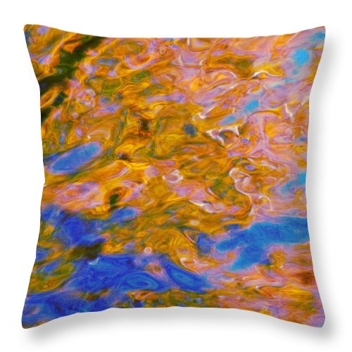 Water Art Throw Pillow featuring the photograph Hidden Dimensions by Sybil Staples